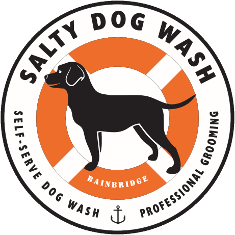 Salty Dog Wash