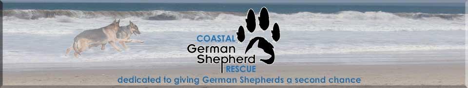 Coastal German Shepard Rescue - Pet Partners